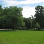 Поляна в Удельном парке 12