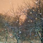 Наконец то наступает зима! Мираж...