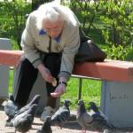 Кто здесь богатый? Для голубей - очевидно!