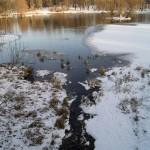 Журчат ручьи