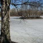 Пруд в Московском парке Победы