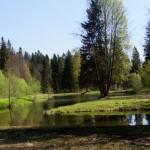 Шуваловский парк. Пруд Шапка Наполеона.