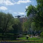 В Юсуповском саду. У пруда.