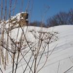 Еще зима в крепости Копорье