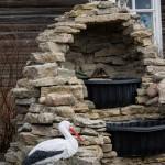 Успенский монастырь. Фонтан с декоративными птицами.