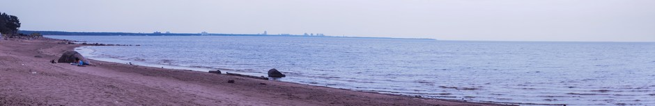 На берегу Финского залива.