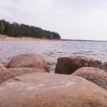 Берег Финского залива в Репино.