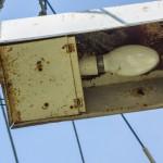 Ласточка деревенская гнездо в лампе
