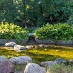 Котка. В парке Сапокка. Растения и камни.