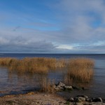 На берегу Ладожского озера.