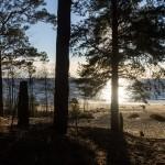 Вид на Финский залив. Репино. Октябрь.