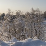 В январе за городом. По дороге к Ладоге.