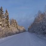 Зимняя дорога. Январь.