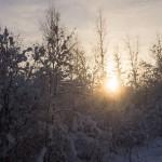 Зимний закат. Январь.