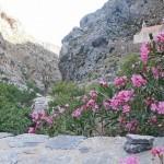 В ущелье Курталиотико на Крите.