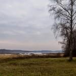 Пушкинские Горы. Михайловское. Вид на озеро Кучане.