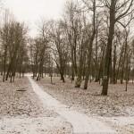 Суйда. Зимний парк в бывшем поместье Ганнибала.