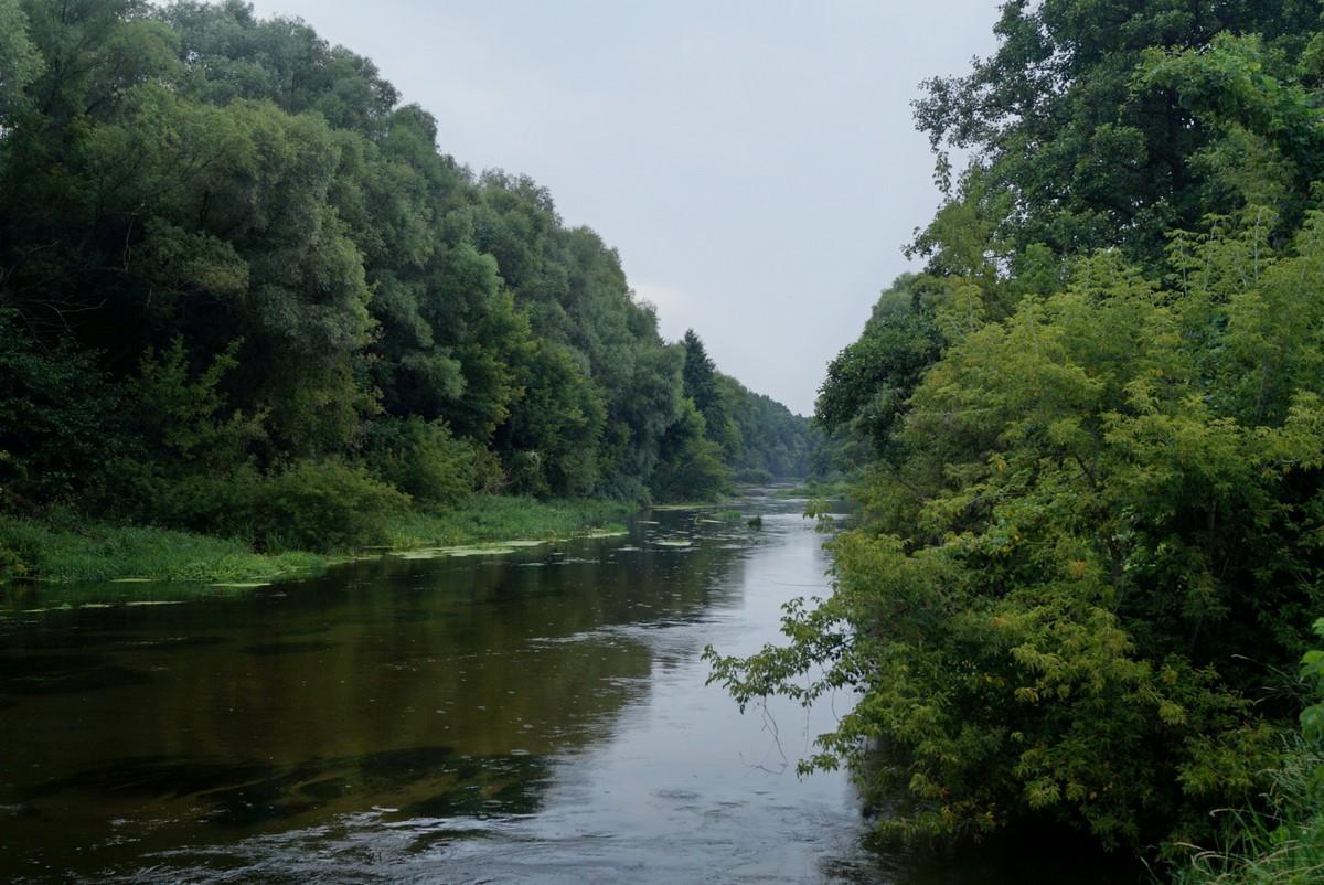 Река Оскол в Белгородской области. У берега.
