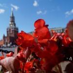 Москва. У ГУМа. Цветы и площадь.
