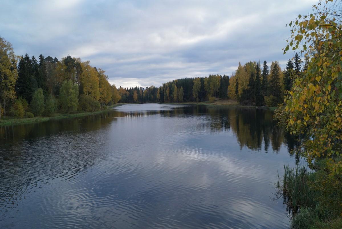 Сиверский. Река Оредеж. Октябрь.
