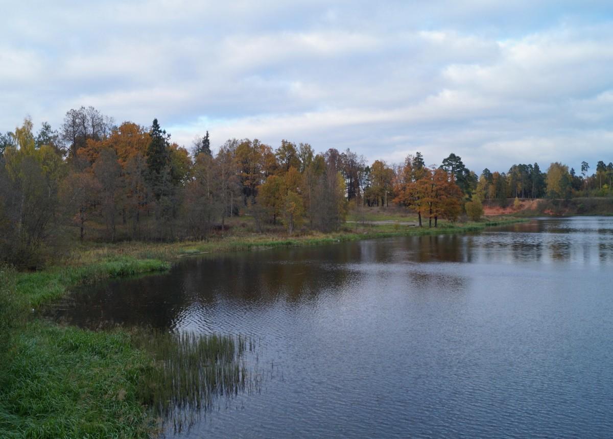 В Сиверском. Река Оредеж.