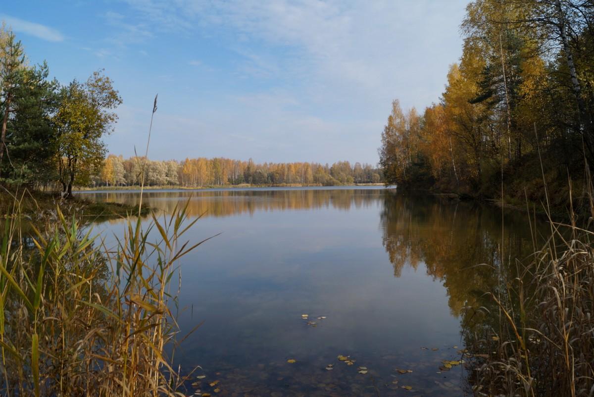 На пруду в Павлово.