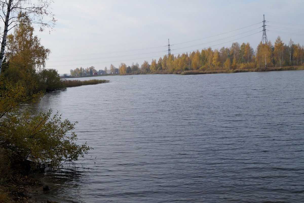 В Павлово-на-Неве. Пруд.
