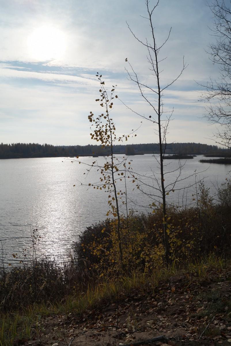 В Павлово. Озеро с островками.