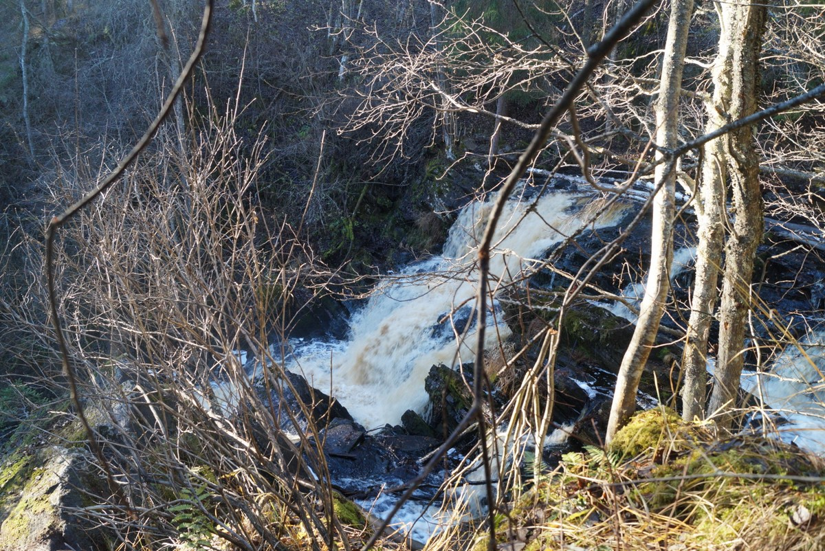 """Водопад """"Белые мосты"""". Что видно из-за ветвей."""
