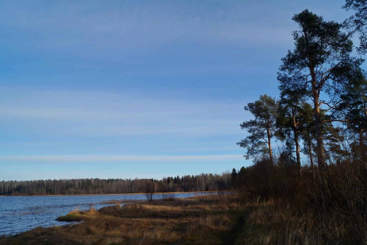 Озеро Руокоярви. По дороге к Белым мостам.