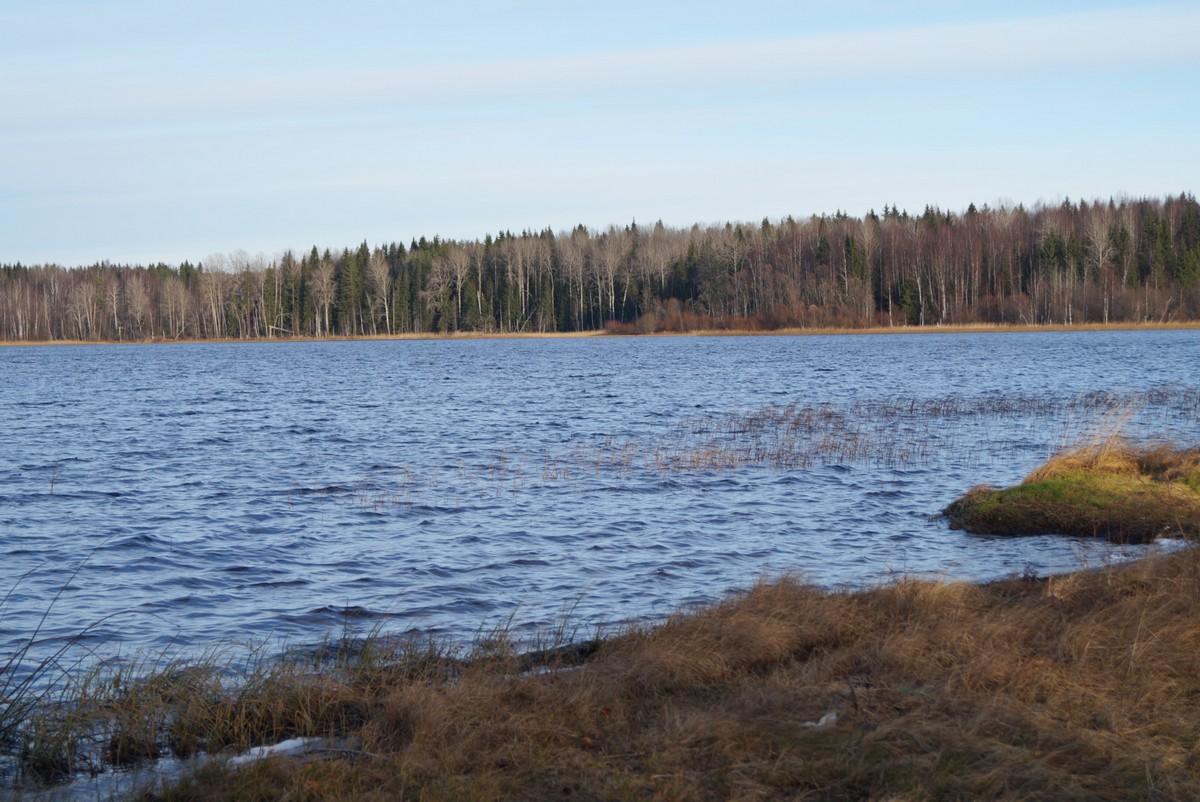 Озеро Руокоярви. Карелия. Ноябрь.