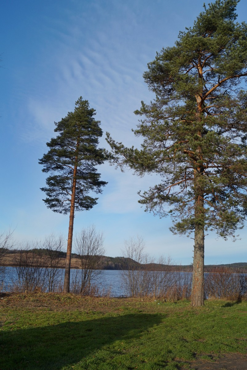 Озеро Руокоярви. Карелия.