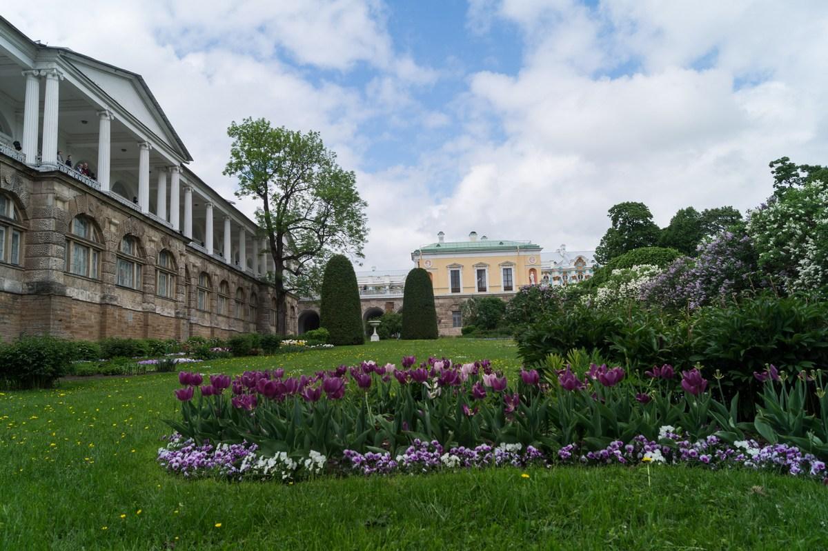 Пушкин. Екатерининский парк. Собственный садик.