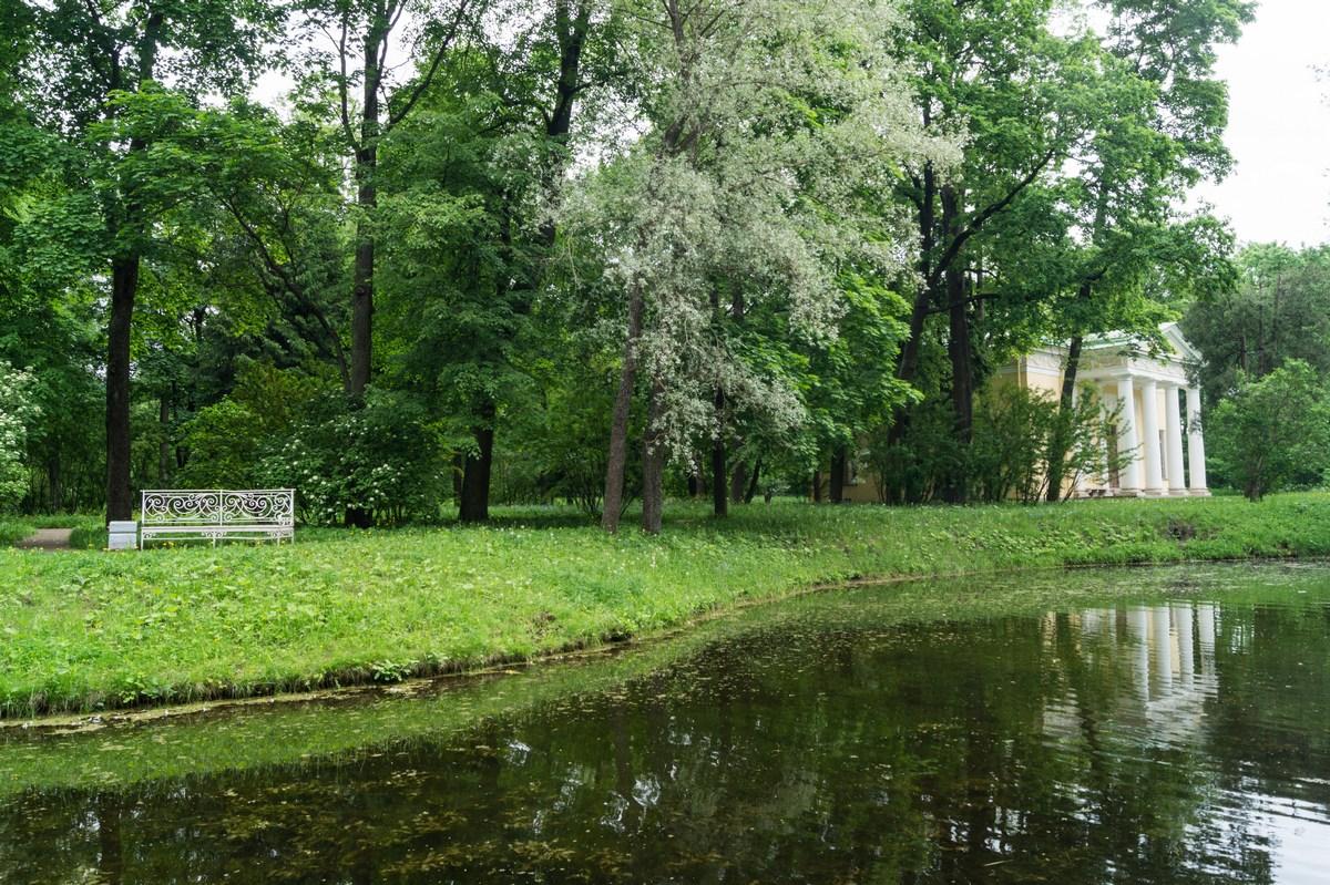 Пушкин. Екатерининский парк. На пруду.