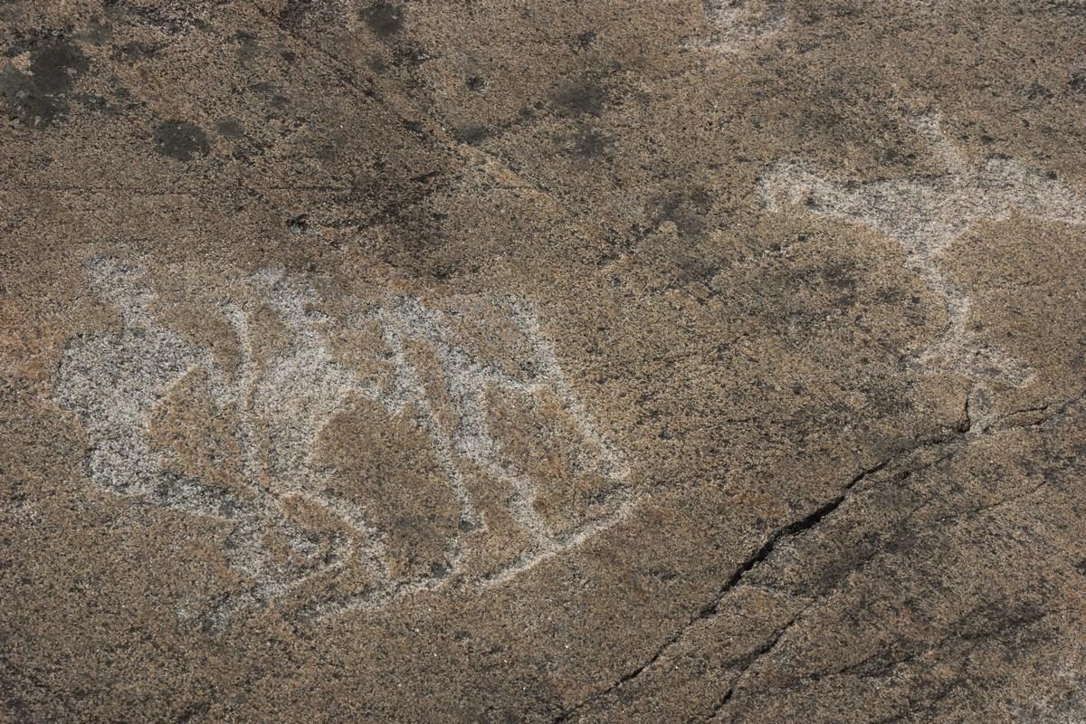 Беломорские петроглифы в Залавруге. Охотники.
