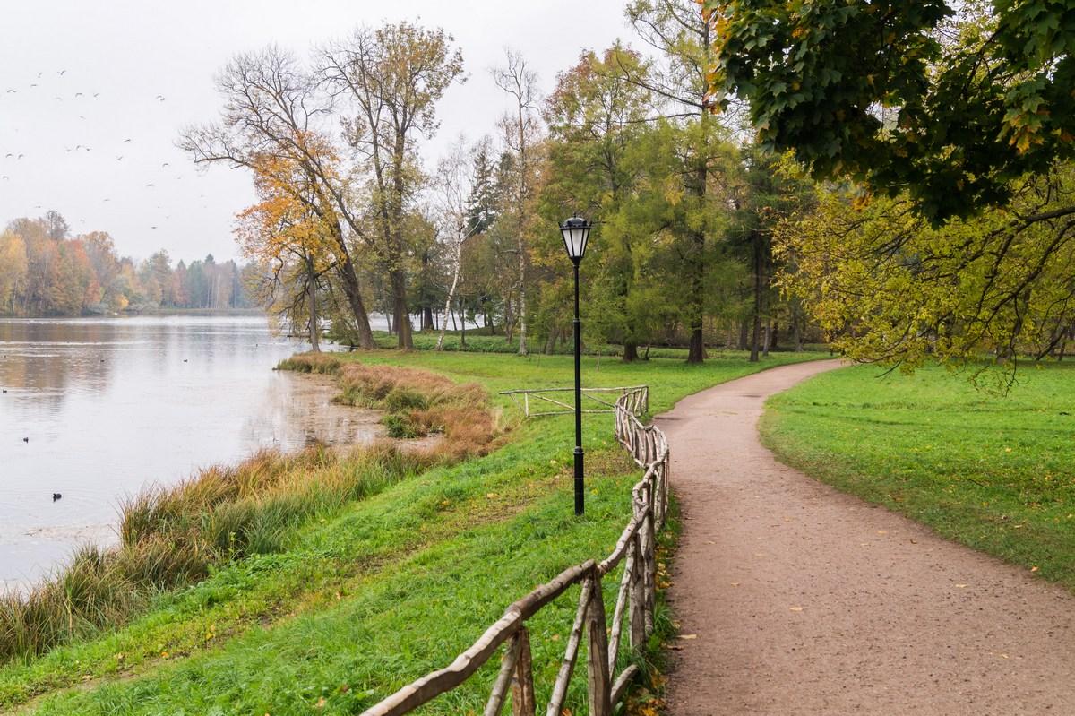 В гатчинском парке. Октябрь. Вдоль Белого озера.
