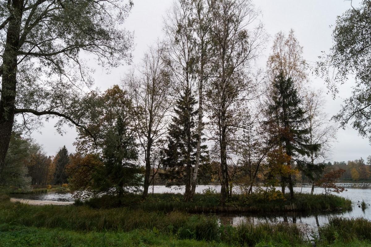 Гатчинский парк. Один из островков на Белом озере.