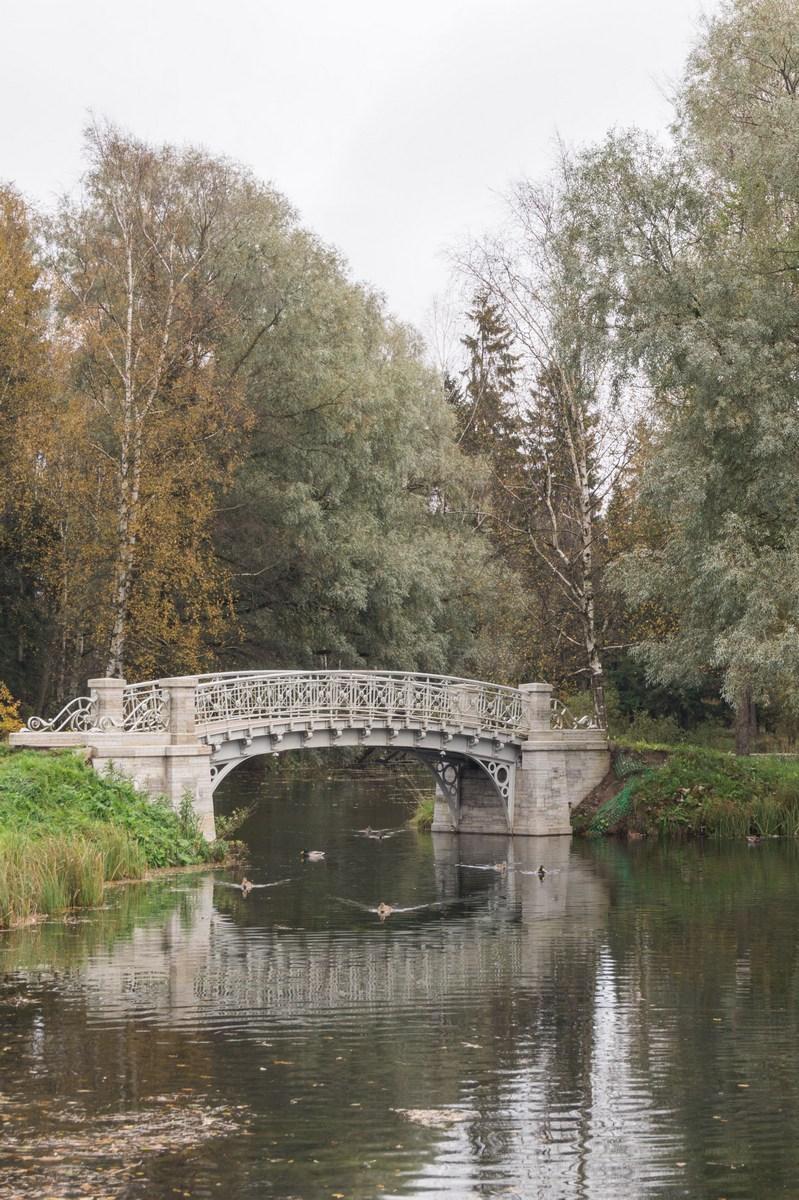 Гатчинский парк в октябре.