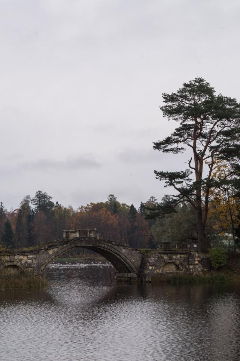 Гатчинский парк. Октябрь. Горбатый мостик.