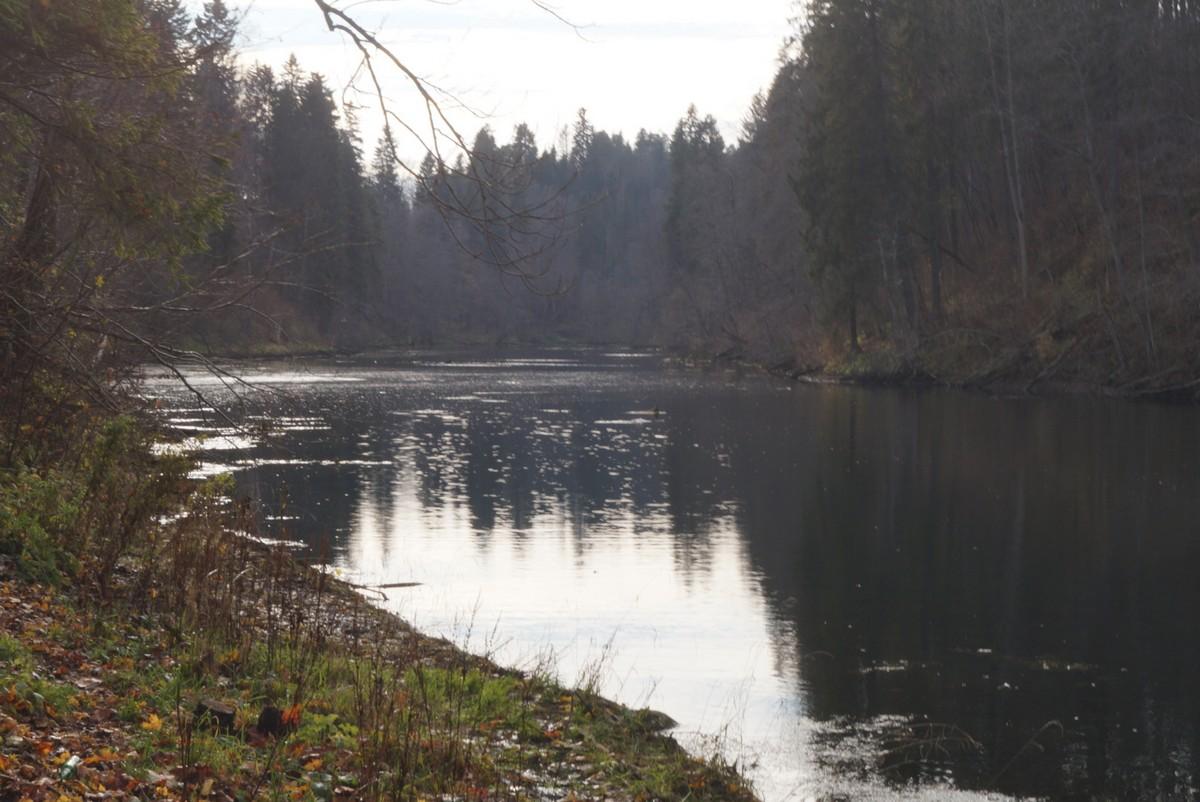 Нижнее озеро в Лопухинке.