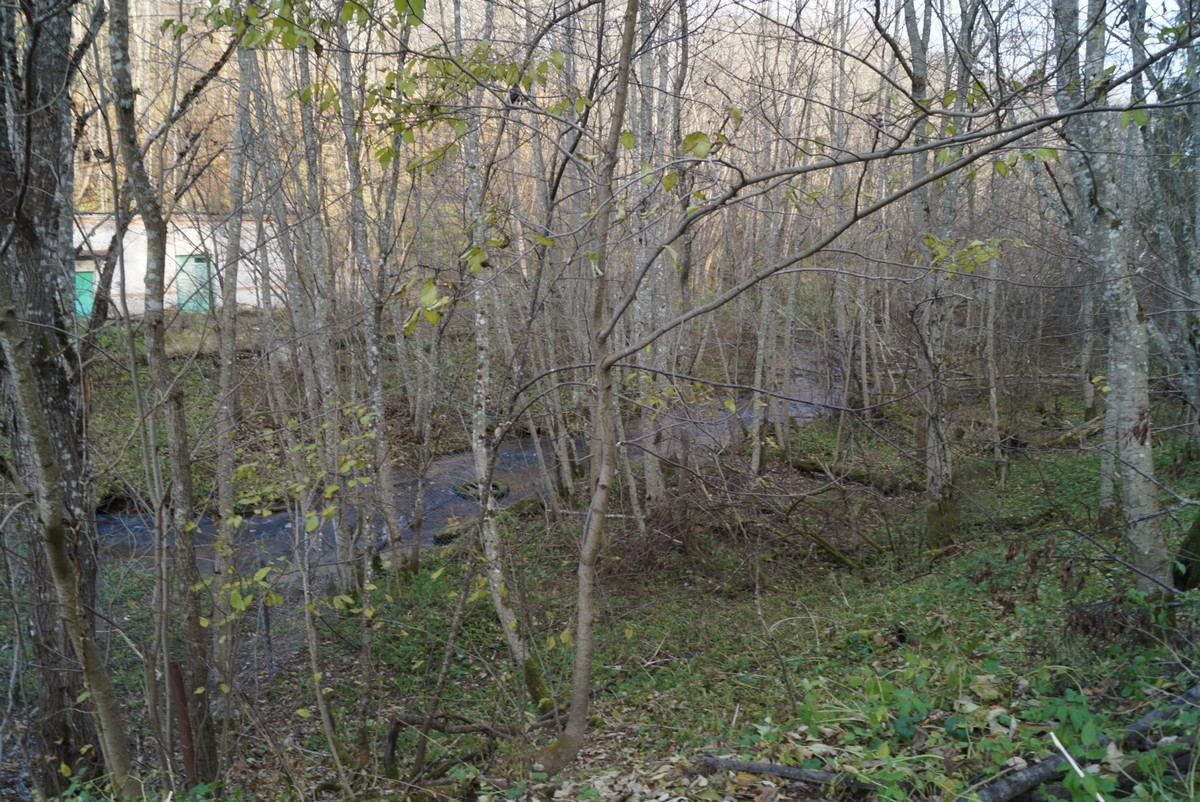 В селе Лопухинка. Вид на реку с высокого холма.