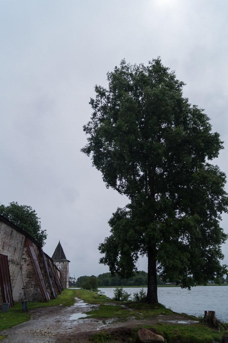 Кирилло-Белозерский монастырь.  У Сиверского озера.