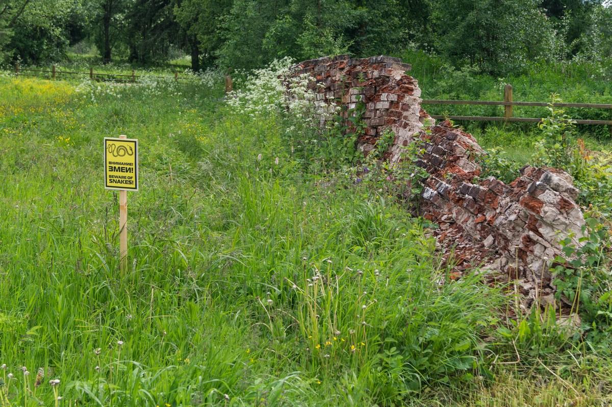Ферапонтово. У Ильинской церкви. Предупреждение о змеях в траве или в развалинах какого-то строения.