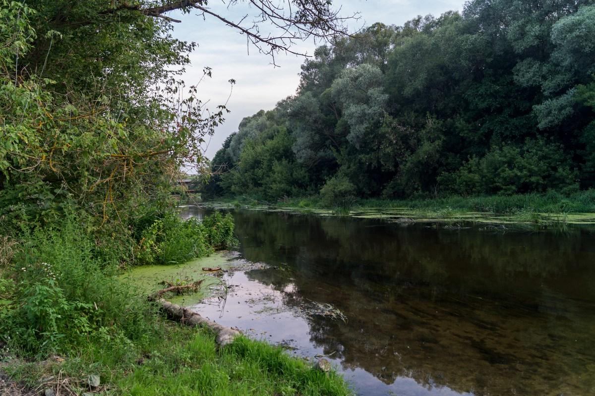 Белгородская область. Река Оскол неподалеку от Холковского монастыря.