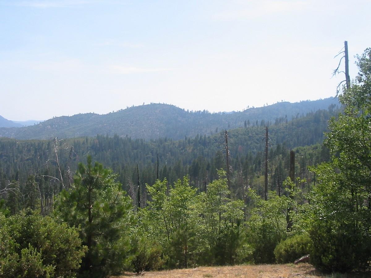 Калифорния. По дороге к парку Йосемити. Уже вокруг небольшие горы.