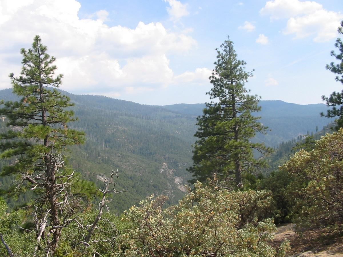 Калифорния. Сьерра-Невада. Долины, небо и леса.