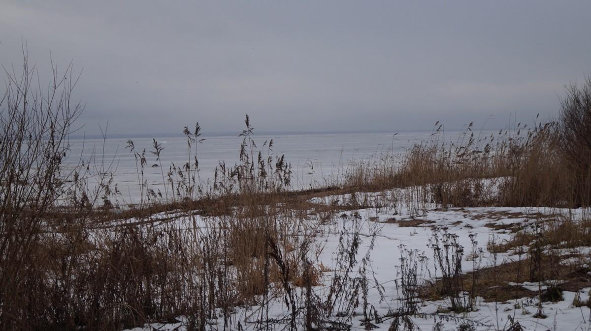 На Финском заливе в Ольгино.