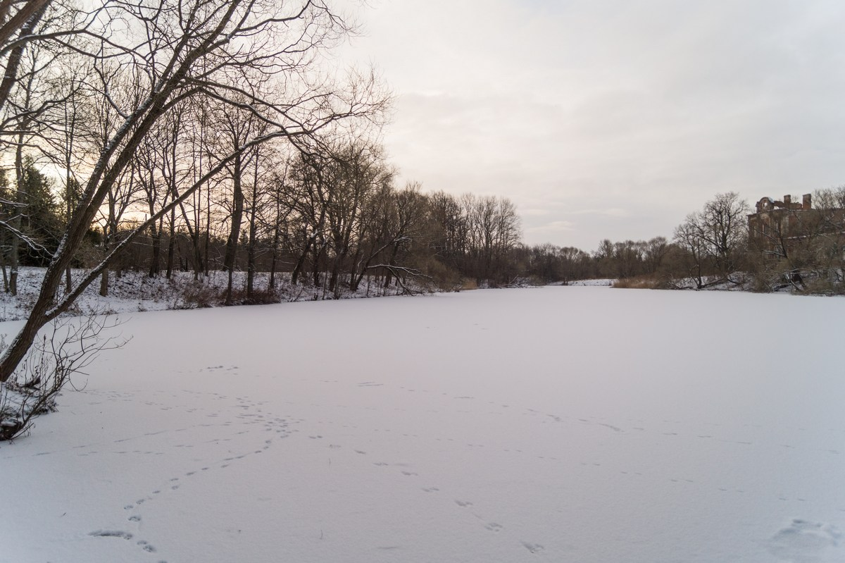 Парк Знаменка. Пруд в январе.