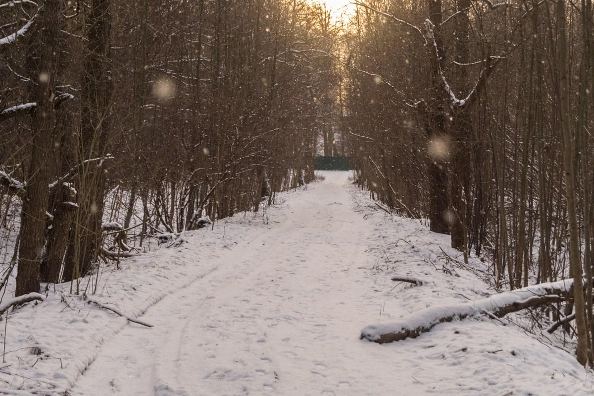 От залива к парку Знеменка. А снег идет.