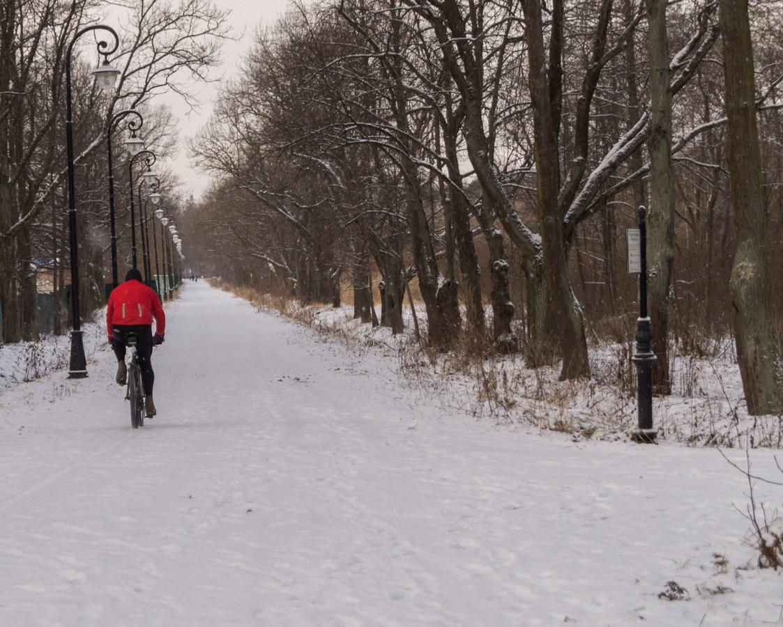 Велосипедист на Нижней дороге в Знаменке. 3 января.